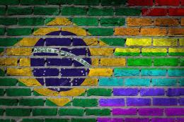 Brasil. Jair Bolsonaro dispuso excluir a la población LGBT de las políticas de DerechosHumanos.